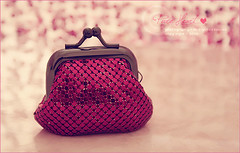 mini bag~ (hana photography ) Tags: bag sony  violet mini hana bent mohammad  dslra200 p ht