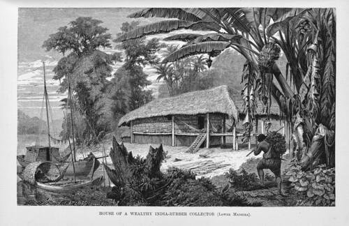 001a-Los rios Amazona y Madeira año 1875-Cabaña de un recolector de goma indio