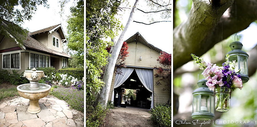 Wedding Photographer Eucalyptus Lane in Ventura