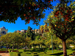 Vista de los Jardines de Pedro Luis Alonso (ASpepeguti) Tags: espaa andaluca spain olympus andalucia andalusia visualart mlaga alandalus e410 zd1442mm aspepeguti satorgettymomentos