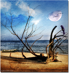 Beach guardian (NeeZhom Photomalaya) Tags: pictures tree beach nature landscape photography photos malaysia imagemanipulation gambar terengganu compositeimage texturedphoto lembahbidong epicworld neezhom