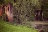 5DMK2_  IMG_0526 (Gian Guido Zurli) Tags: italy abandoned architecture garden ruins giardino rovine sangiovanniincrocecr
