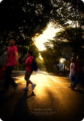 Let the sun shine through. (digitalpimp.) Tags: street interestingness singapore candid scout explore cbd vignette picnik orchardroad konicaminolta a300 grangeroad theworldthroughmyeyes digitalpimp sonyalpha platinumphoto colorphotoaward nathanhayag konicaminoltaafdt18200mmf3556dt bananats