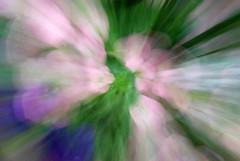Springtime Pastel Swirlies (MichaelBarrow) Tags: pink flowers blue vortex green spring pastel impressionism swirl panning swirly impressionistic springtime colourartaward yourcountry lenspanning