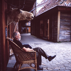 Wild Scandinavia (patrickjoust) Tags: street city travel people urban man color 6x6 tlr film norway analog square lens norge reflex chair focus europa europe flickr fuji mechanical head patrick twin slide moose tourist mat v chrome 124g epson medium format manual bergen 500 scandinavia expired 80 joust fujichrome e6 yashica bryggen 220 astia 80mm 100f f35 reversal yashinon v500 terrascania autaut patrickjoust