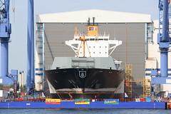 Hanse Sail 2009 - Kvaerner Warnow Werft - Wada...