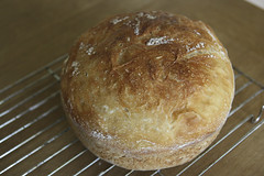 Perfect No Knead Bread