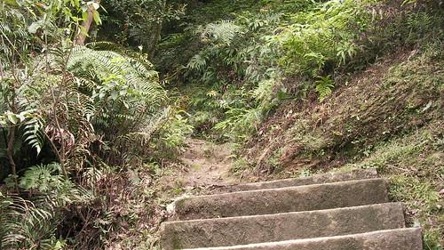 皇帝殿登山步道_07_此處易經沒有階梯了_2011_05_07