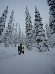 P1000066 (m_dowhaniuk) Tags: snow snowboarding redfish