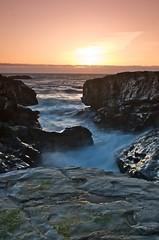 Panther Beach (Daniel Walters) Tags: santa sunset beach cruz panther