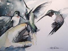 i dream in color... (Jennifer Kraska) Tags: watercolor jennifer hummers kraska hummungbird