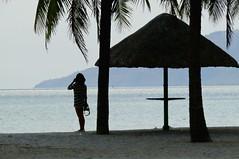 hello summer (jobarracuda) Tags: fab silhouette lumix photographer philippines shade coconuttree subic indio pilipinas zambales fz50 picnichut reejoie panasoniclumixdmcfz50 jobarracuda flickristasindios jojopensica
