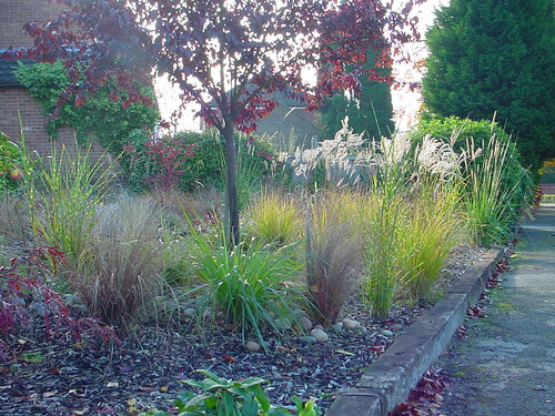 Gardens and Grasses Image 16