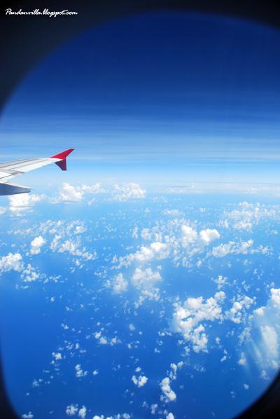 plane view 2