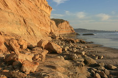 Black's Beach, CA (remediosmorales) Tags: park beach pines torrey