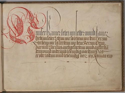 Plimpton MS 300 - Stephan Brechtel a
