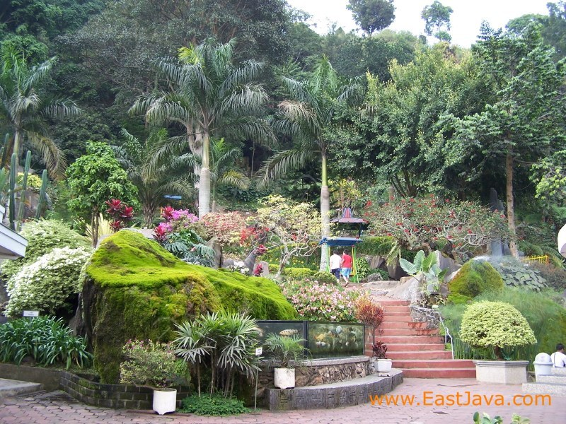 Selecta Flower Garden | East Java, Indonesia. A Tropical Paradise in ...