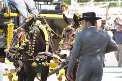 Man en paard (muilezel)