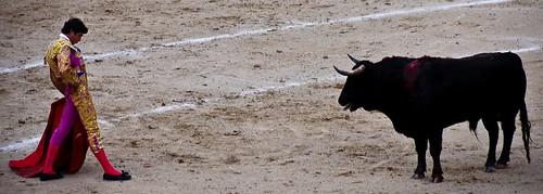 Faceoff - Matador v Bull