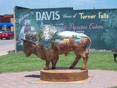 Davis Buffalo