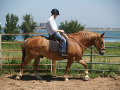 Z learning to ride on Mac (lostinfog) Tags: august 2009 colorado e300 mac riderzm horse