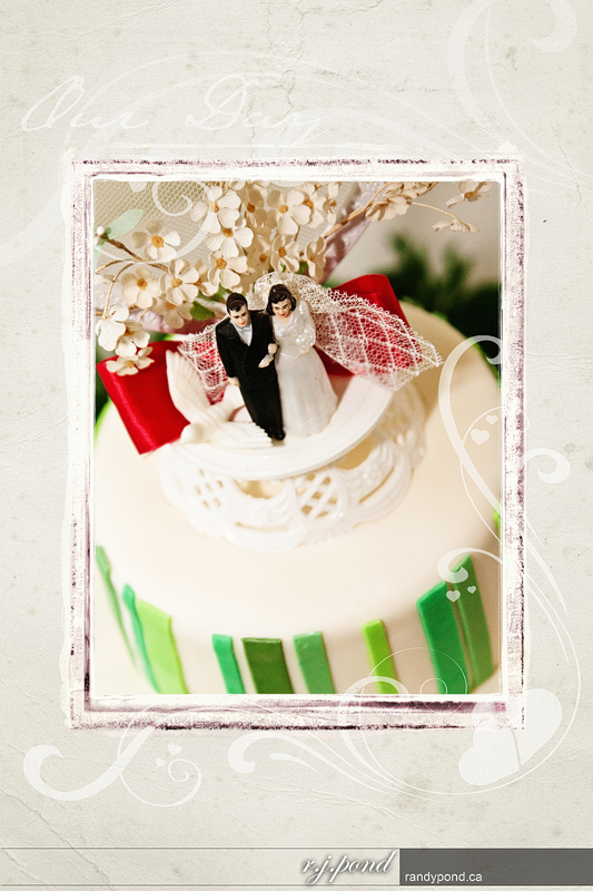 ~ The Cake ~