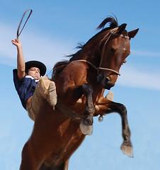 Naquela toada... (Eduardo Amorim) Tags: brazil horses horse southamerica brasil caballo cheval caballos cavalos pelotas pferde ca