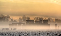 Stonehenge (Dave Andrew) Tags: england mist english heritage standing sunrise circle ancient sheep stones stonehenge salisbury mystical druid wiltshire magical pagan tamronaf70300mmf456dildmacro