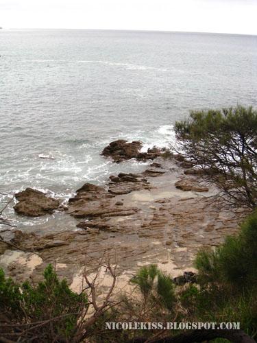 beautiful scenery at great ocean road