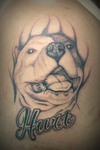 Pitbull Tattoo Tattoo By: Diegoh of