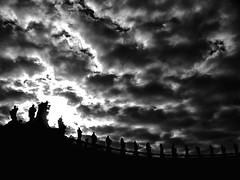VATICANO: otros puntos de vista..y de sus palomas / other points of view....and of its doves> 2 (ToniMolero07) Tags: sky bw italy vatican rome roma stone clouds contraluz wonder italia columns esculturas bn vaticano cielo nubes sculptures backlighting piedra columnas maravilla tonimolero