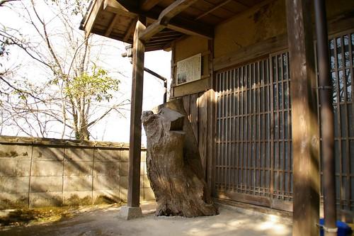 軽部神社 #3