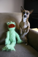 Kermie's friend