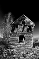 tired barn (65439532577345) Tags: wood old blackandwhite bw house building tree barn country falling collapse shack leaning crooked