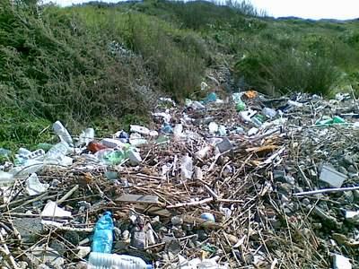Rome WWF or garbage dump?