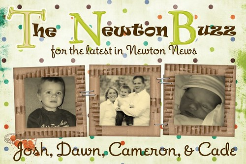 The Newton Buzz