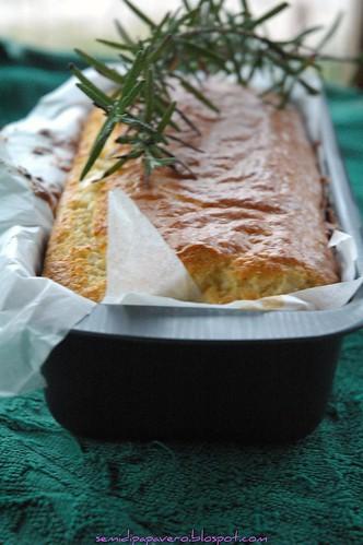 Cake gorgonzola