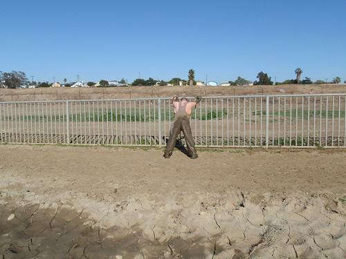 Fence_Back