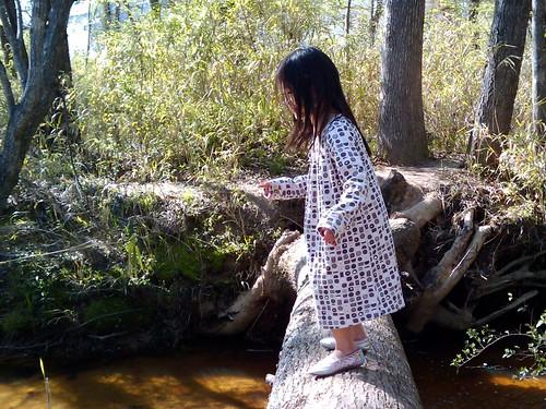 Caden walking across fallen tree
