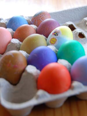 eggs of color