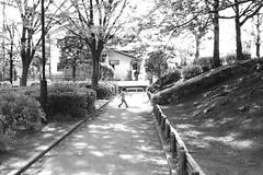 町田樹 画像11