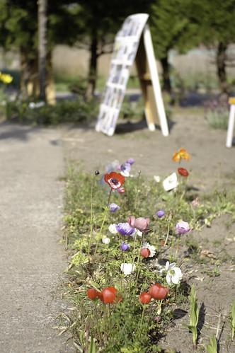 浜メグリ 浜の春展 2009
