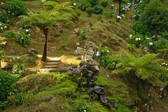 Nordeste, Sao Miguel, Azores, Portugal (ikwikkers) Tags: green portugal miguel canon landscape island eos islands sao atlanticocean azores nordeste aores 400d flickrchallengegroup