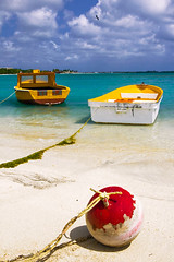 Floating colors (mirellawognum) Tags: ocean sea beach colors island boat sand aruba caribbean buoy buoyant platinumheartaward artlegacy lpfloating