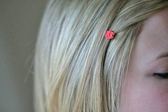 lovely hairpins, coral.