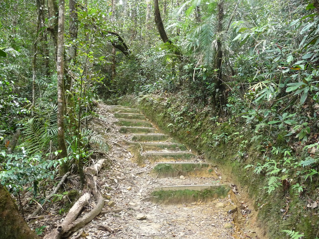 Kinabalu-PN (44)