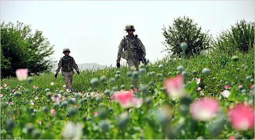 Bowe Bergdahl captured in afghanistan