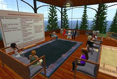 Second Life Problem Based Learning Group by Robin M. Ashford, on Flickr