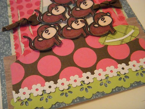 Monkeys card close up