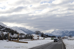 IMG_8132 (Miguel Angel Mora (GSi_PoweR)) Tags: espaa snow andaluca carretera nieve nevada sunday bosque granada costadelsol domingo maroma mlaga mountainroad meteorologa axarqua puertomontaa zafarraya sierraalmijara caosalcaiceria